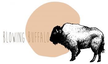 3_lalaiablowingbuffalo-01.png